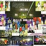 '15関コレAWカラーレポート01-2s